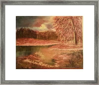 Serene Lake  Framed Print
