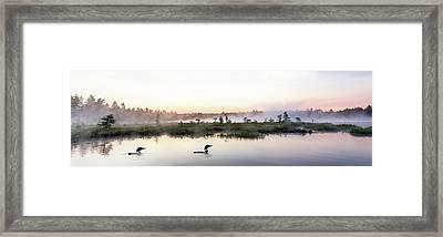 Serene Morning On The Lake Framed Print by Brent L Ander