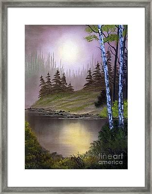 Serene Nightscape Framed Print