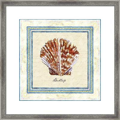 Serene Shores - Scallop Shell Framed Print by Audrey Jeanne Roberts