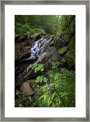 Framed Print featuring the photograph Serene Solitude by Bill Wakeley