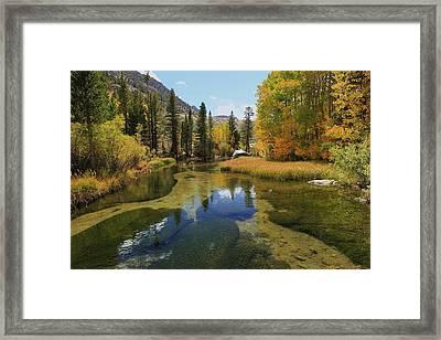 Serene Stream Framed Print