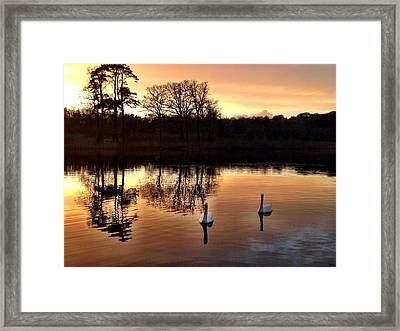Serene Twilight Framed Print