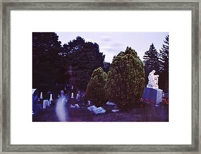 Serene Visitation Framed Print by Don Youngclaus