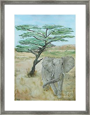 Serengeti Elephant Framed Print by Yvonne Johnstone