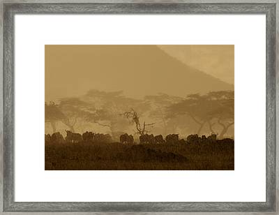 Serengeti Monsoon Framed Print