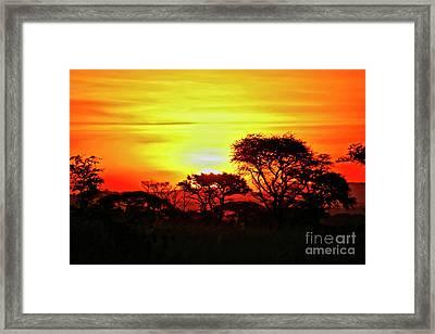 Serengeti Sunset Framed Print