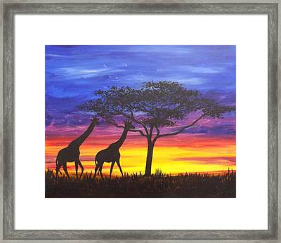Serengeti Sunset Framed Print by Darren Robinson