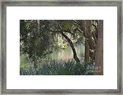 Framed Print featuring the photograph Serenity by Carol  Bradley