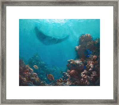 Serenity - Hawaiian Underwater Reef And Manta Ray Framed Print