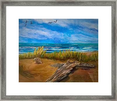 Serenity On A Florida Beach Framed Print
