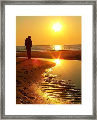 Serenity Framed Print by Trish Tritz