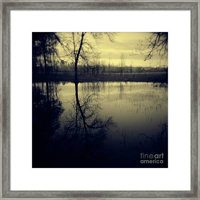 Series Wood And Water 5 Framed Print