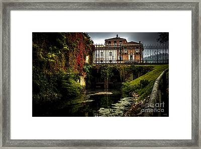 Seriola With Autumn Colors Framed Print