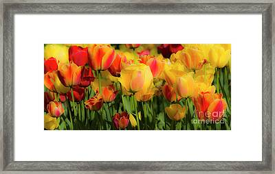 Framed Print featuring the photograph Seriously Spring by Wendy Wilton