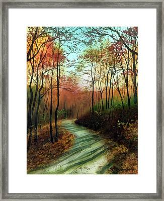 Serpentine Road Framed Print