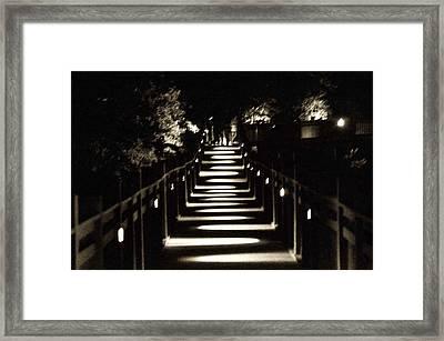 Serpentine Shadow Framed Print