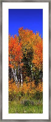 Set 54 - Image 2 Of 5 - 10 Inch W Framed Print by Shane Bechler