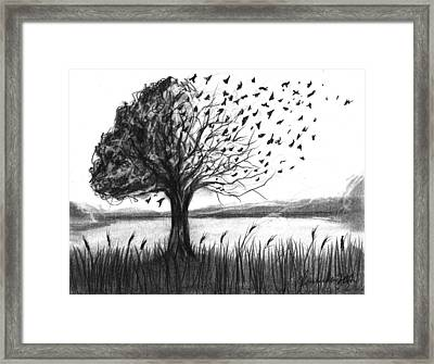 Set Free Framed Print by J Ferwerda