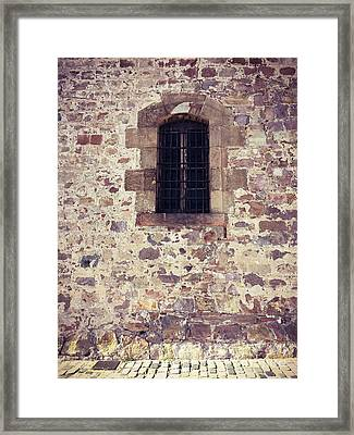 Framed Print featuring the photograph Set In Stone by Colleen Kammerer