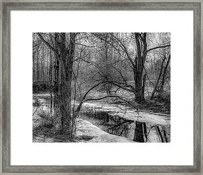 Framed Print featuring the photograph Set On Defrost by Kendall McKernon