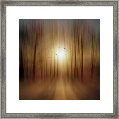 Setting Sun Framed Print