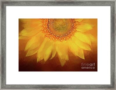 Setting Sun Framed Print by Darren Fisher