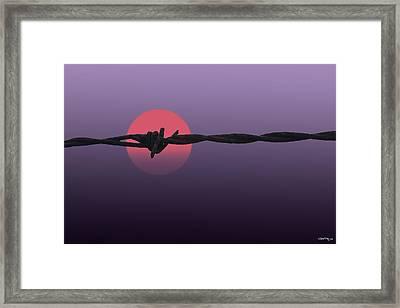 Setting Sun Framed Print by Skip Tribby
