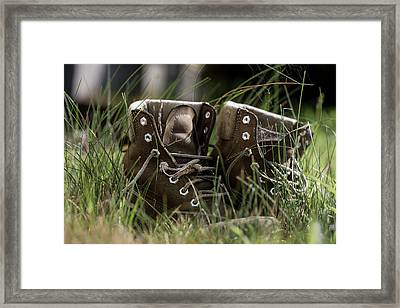 Settled In Framed Print by Andrew Pacheco