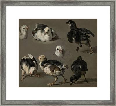 Seven Chicks Framed Print