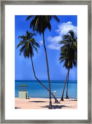 Seven Seas Beach Puerto Rico Framed Print by Thomas R Fletcher