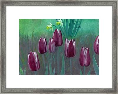 Seven Tulips Framed Print by Laurel Ellis