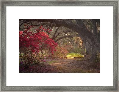 Seventy-three Degrees And Sunny Framed Print