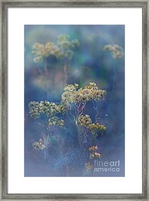 Severance Framed Print