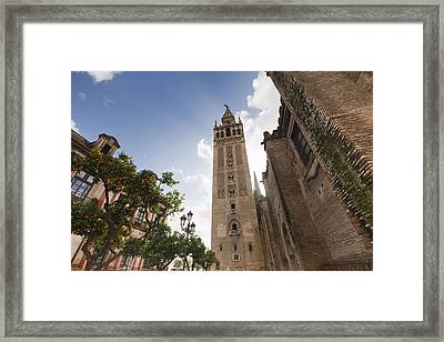 Sevilla Framed Print by Andre Goncalves