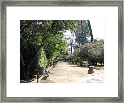 Seville Garden Pathway Iv Spain Framed Print