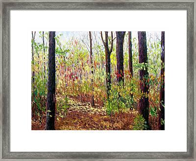 Sewp 7-05 Framed Print