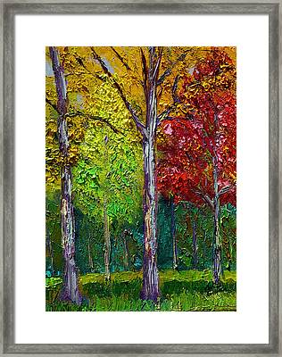Sewp Fall Framed Print by Stan Hamilton