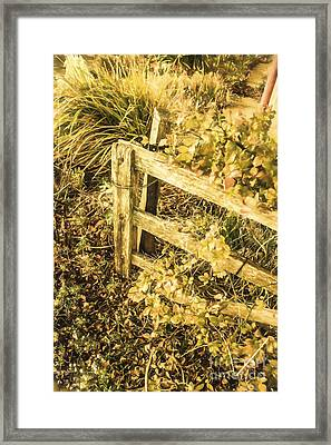 Shabby Garden Details Framed Print by Jorgo Photography - Wall Art Gallery