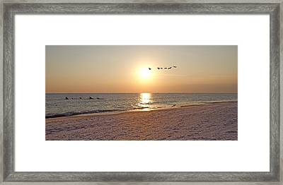 Shackleford Banks Sunset Framed Print by Betsy Knapp