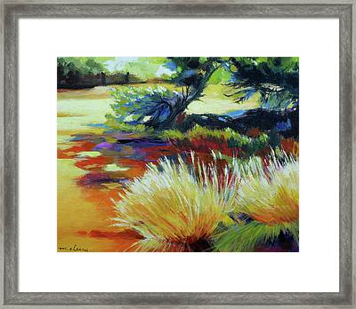 Shade At Smith Rock Framed Print by Melody Cleary