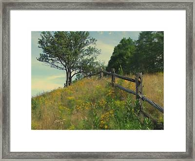 Shade Tree Framed Print by Eddie Durrett