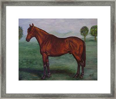 Shadeed Champion European Racehorse Framed Print