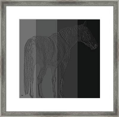 Shades Framed Print by Debra     Vatalaro