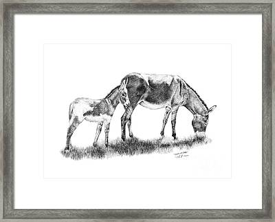 Shades Of Gray Framed Print by Sabrina Thiel
