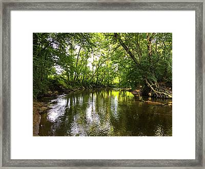 Shades Of Green Framed Print by Susan Leggett