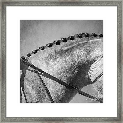 Shades Of Grey Fine Art Horse Photography Framed Print