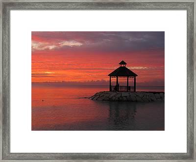 Shades Of Paradise Framed Print by Addie Hocynec