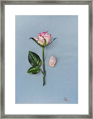Shades Of Pink Framed Print by Elena Kolotusha