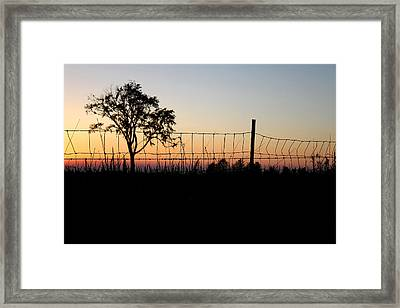 Shadow Binding Framed Print by Mark  France
